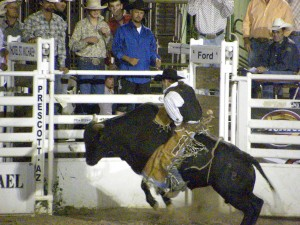 Yavapai County Fair @ Prescott Rodeo Grounds